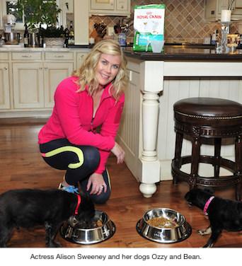 Alison Sweeney Pet Obesity