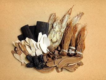 Chinese Herbs Veterinary Medicine