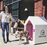 Helping Dogs Beat the Heat With Air-conditioned Kennels