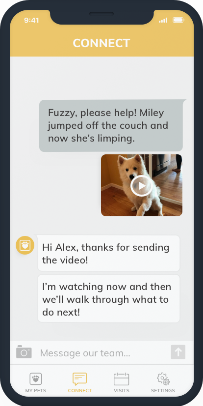 Fuzzy Connect Telemedicine