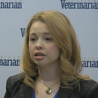 Veterinarians and the Animal Welfare Community Should Work Together