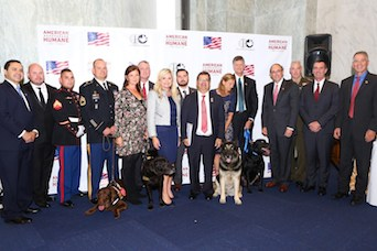 military dog awards