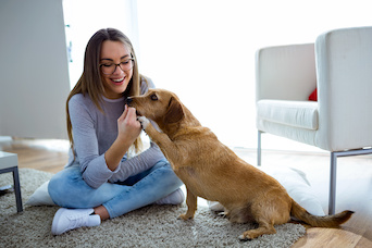 Pet Food Packaging Matters to Younger Buyers