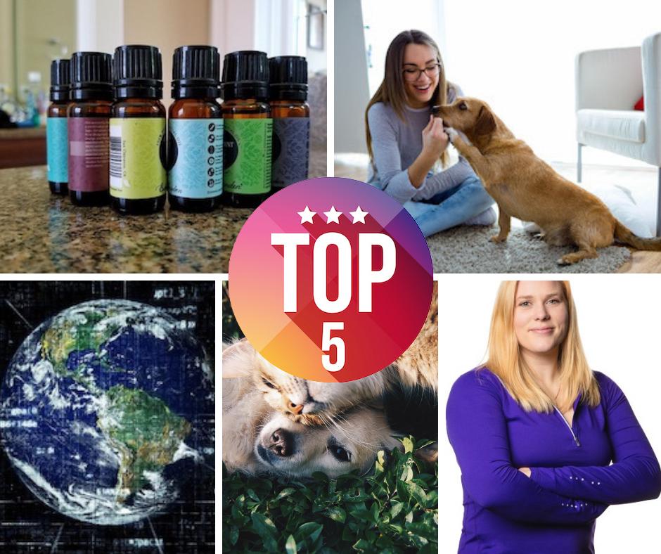 Top 5 Articles