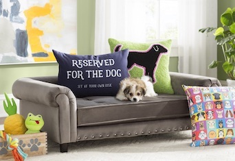 Wayfair Launches Pet Line