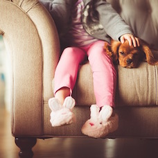 Pets Play Pivotal Role in Home Buying