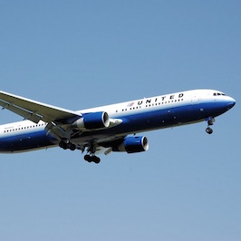 United Airlines: Most Animal Deaths on U.S. Flights